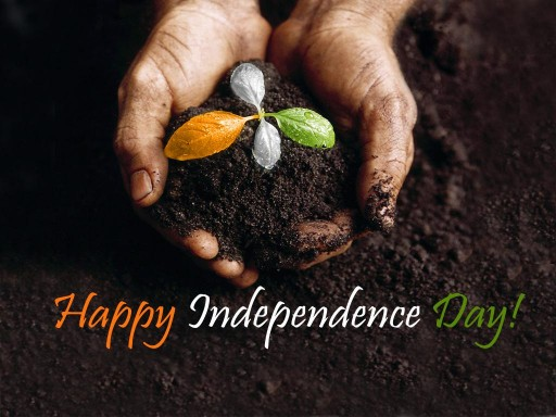 69% Off on 69th Independence Day Celebration